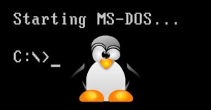 DSL, the subsystem that allows us to run Linux on…