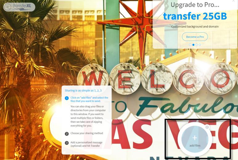 TransferXL