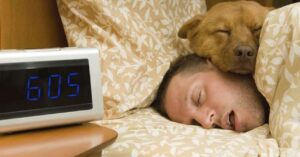 Snoring apps to control your sleep with your smartphone