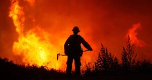 Useful forest fire apps on mobile