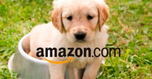 How to create a profile for our pet on Amazon