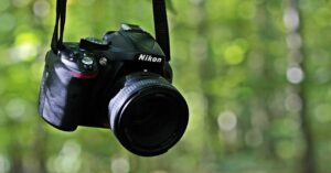 5 alternative image viewers to Windows Photos for 2021