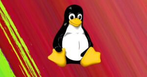 They detect important vulnerabilities that affect Linux servers