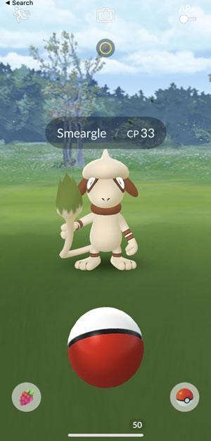 catch smeargle pokémon go