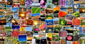 Make a mosaic to use on Instagram with Photoshop