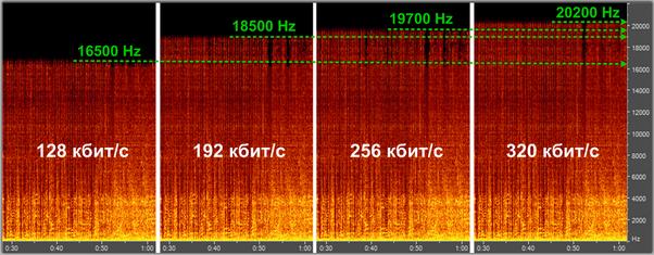 Lossy audio