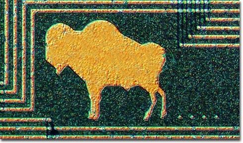 Buffalo_chip