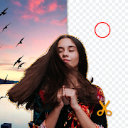 Automatic background remover: background changer