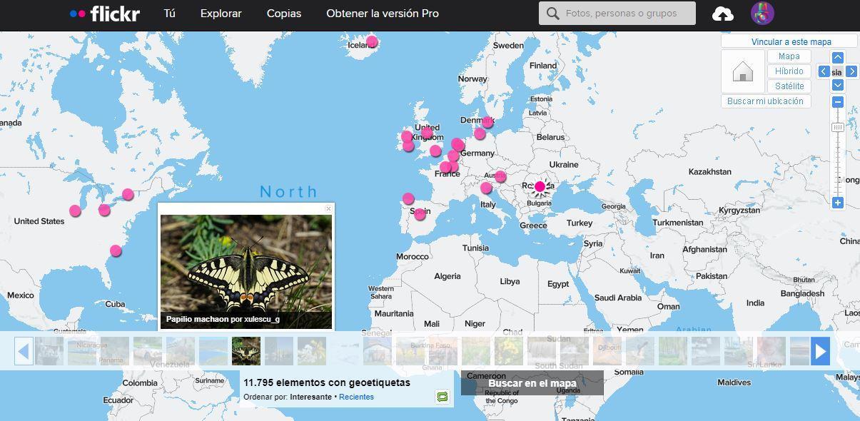 flickr world map