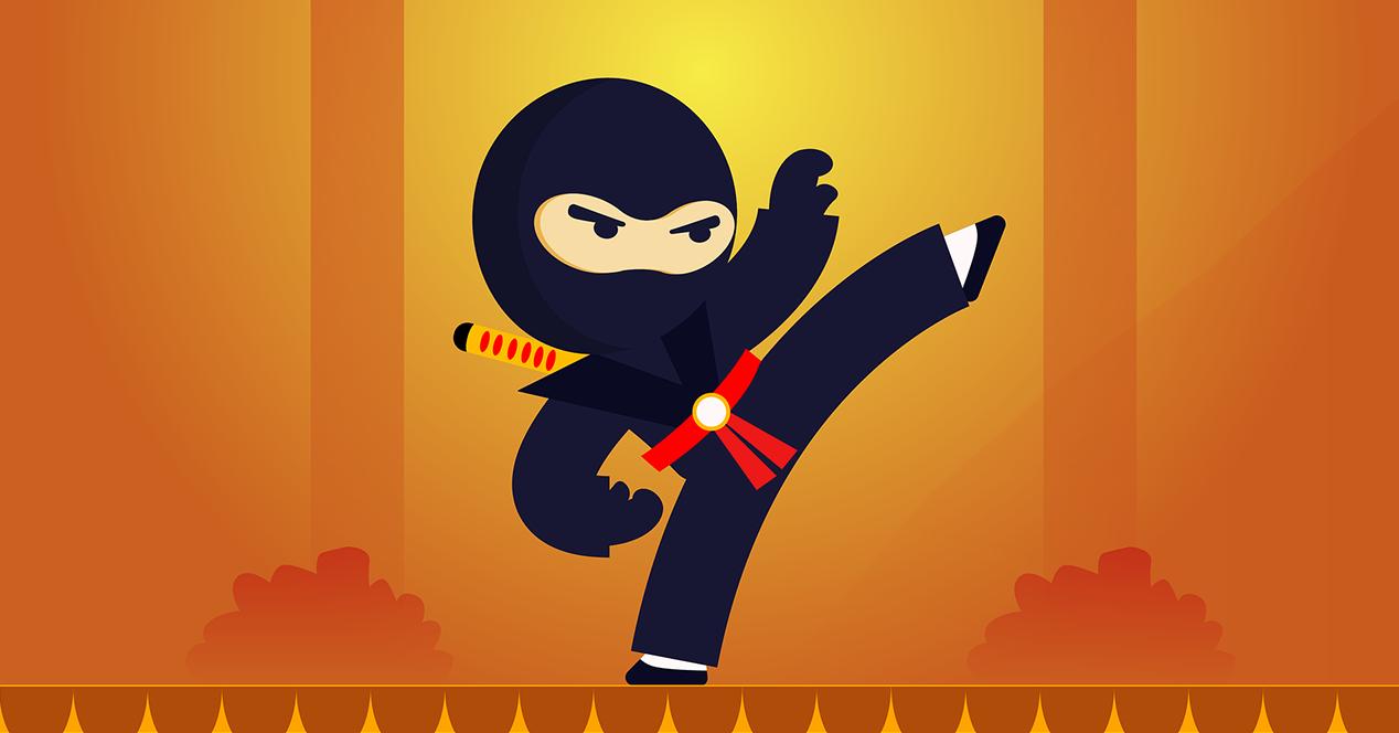 Illustration of a Ninja