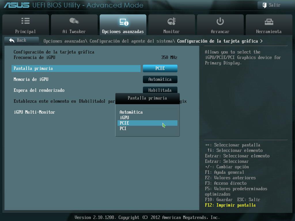 BIOS GPU screen black